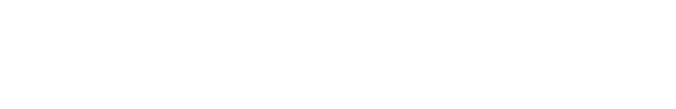 Ducati Berlin Logo Weiß